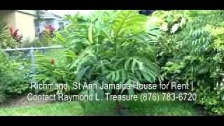 Richmond Jamaica House For Rent Courtyard Tour