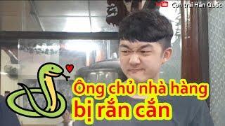 Người Hàn lần đầu trải nghiệm các món ăn từ rắn tại Việt Nam như thế nào?