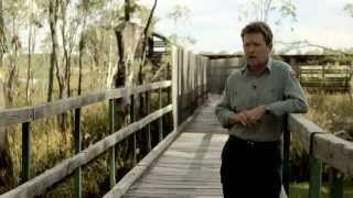 Watering The Largest River Red Gum Forest In The World