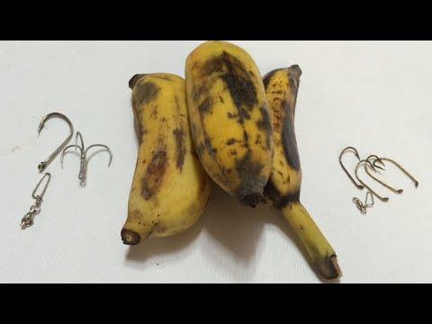 DIY - Fishing Tips- How to Hook Bananas for River Catfishing(33) Móc Chuối Câu Cá Tra