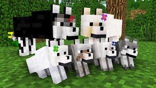 WOLF LIFE MOVIE   Cubic Minecraft Animations   All Episodes + BONUS