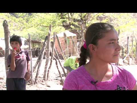 SedeshuGTo. Testimonio Sra. Mercedes Sánchez Habitante Tortugas Xichú,Gto.