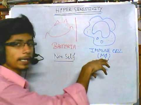 Introduction to hypersensitivity