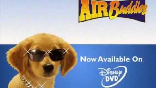 Air Buddies
