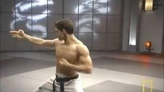 Fight Science Bren Foster Taekwondo Speed