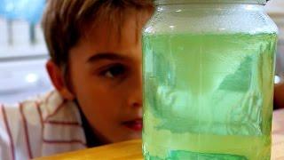 Make A Tornado In A Jar Science Trick