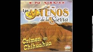 Crimen En Chihuahua ~Los Alteños De La Sierra