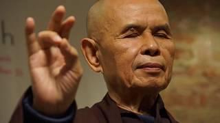Vì sao Thiền sư Thích Nhất Hạnh phải lặng lẽ rời Việt Nam?
