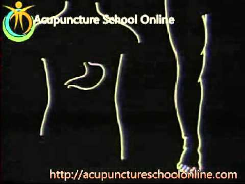 Chinese Acupuncture Video Course Lesson 9 (Part 1) - Diagnosis & Treatment Of Internal Medicine I