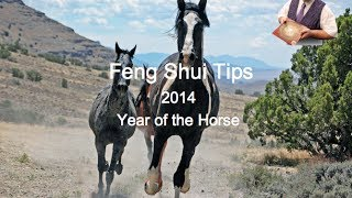 Feng Shui Tips 2014, Year Of The Horse Master George's