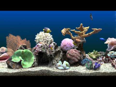 HD Virtual Aquarium #3 (1080p)