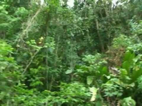 Video promocional turismo sevilla