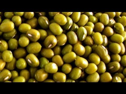 Boiled Mungo Beans - Nutritional Information