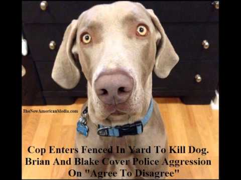 Cop Trespasses To Kill Fenced In Dog! Brian Engelman & Blake Walley Cover Police Violence.