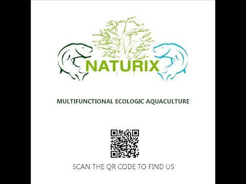 Naturix vision - Growth and Improvement Project 2014 [ENGLISH]