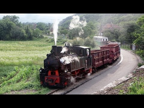 Schmalspurbahn Brad -- Criscior HD Narrow Gauge Steam  Railway Romania
