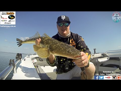Fish That Snag - Austackle Camo-Stik & Whiptail Grub