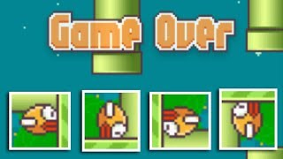 Flappy Bird Craze - Stupid, Successful & Gone Forever