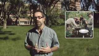 ¿Qué Es La Diversidad Biológica?