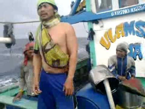 Ulamsari Band Suci Dalam Debu {Nelayan Tegal}.mp4
