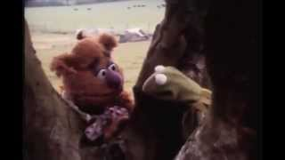 Improvised Muppet Movie Camera Test: 1979