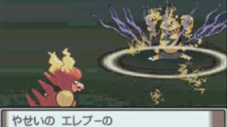 Pokemon Platinum How To Get Magmortar And Electivire
