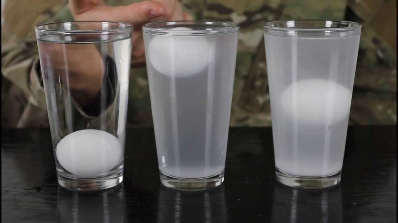 Eggs Amp Salt Water Water Density Science Experiment Youtube