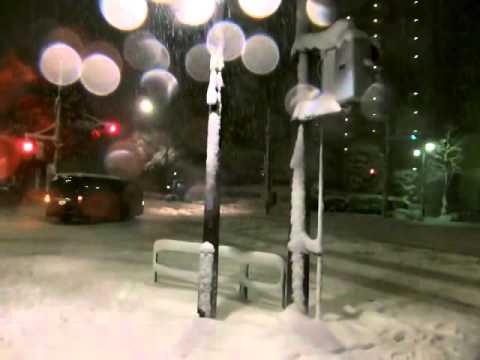 東京大雪でそり遊び~練馬区~TOKYO JAPAN HEAVY SNOW