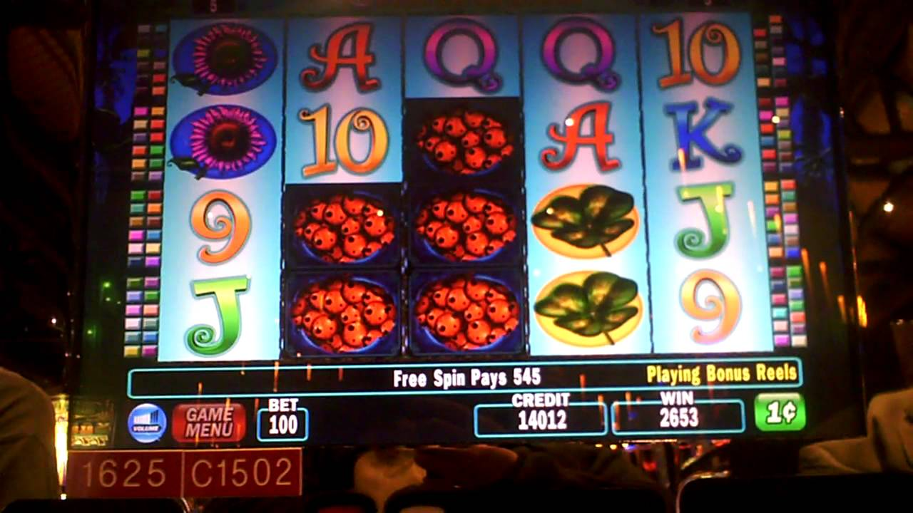 3 reel slot machine winners videos 2012 v-strom