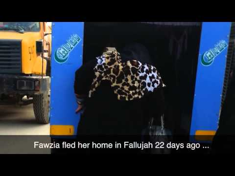 Iraq: Aid comes to families fleeing violence in Al-Anbar province