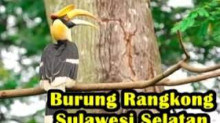 Persebaran Flora Dan Fauna Indonesia