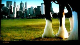 September 11, 2011 Budweiser Commercial Redone With New