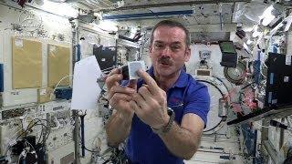 Astronaut Chris Hadfield Plays Jamie Hyneman and Adam Savage's Space Game on the ISS