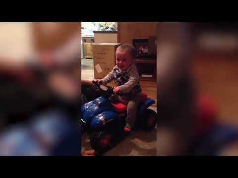 Top 10 Baby Drives | * Best Scene Baby Drivers * |Funny Babies and Pets