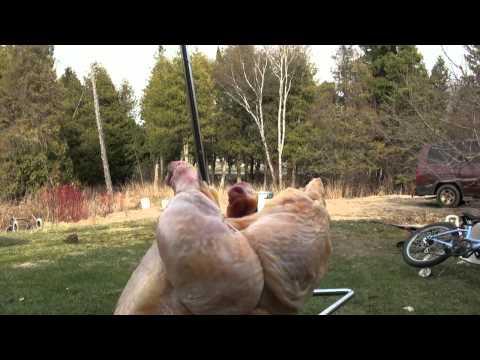 deep frying a chicken