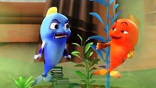 Fish for Kids Cartoon   Kids Cartoon 2016