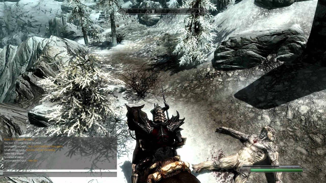 skyrim online gameplay pictures
