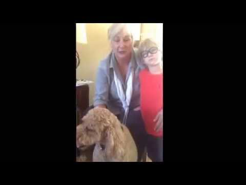via YouTube Capture thank-you Scottsdale dog training ''k9katelynn'' on helping snickers doodle (our 5year golden doodle ) on helping her with greeting people at the door!!