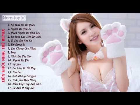 Liên Khúc Sự Thật Đã Bỏ Quên   Người Đã Yêu Ai Remix   Việt Mix 2015 HOT