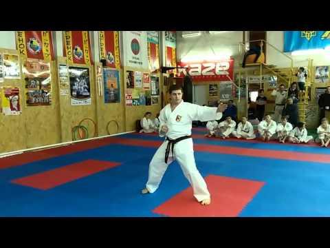 Аттестация по каратэ на коричневые и черные пояса Ката на 1 и 2 Кю Экзамен 2016 01 31