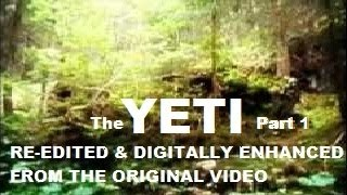 The YETI Filmed Accidentally Rare Footage FINAL PROOF