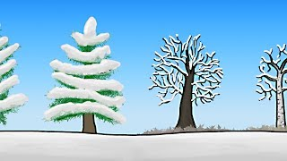 How do Trees Survive Winter?
