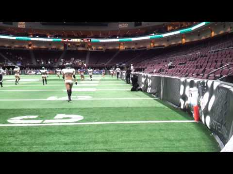 CHICAGO BLISS PICK SIX LINGERE LEAGUE