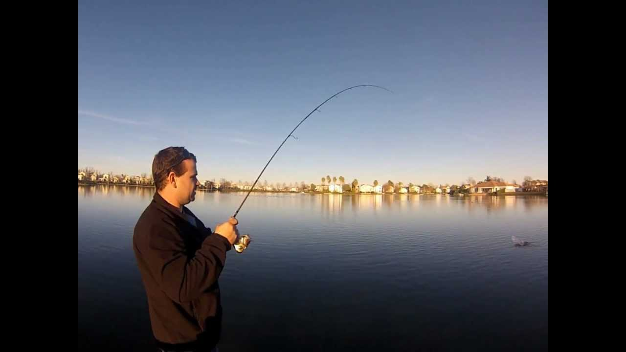 Corn fed carp fishing in the city vol 1 youtube for Fishing without a license california