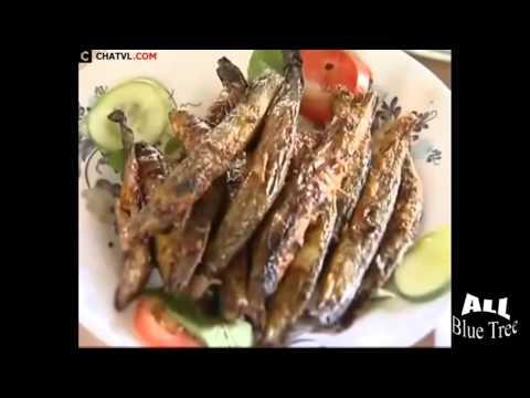 Bắt và chế biến các món ăn từ cá chạch   Catch and cook dish from Loach fish