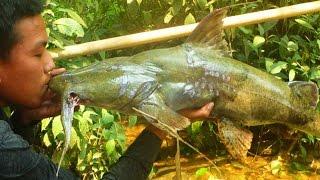 Đi săn cá Chiên & cá Lăng - Sông Đà