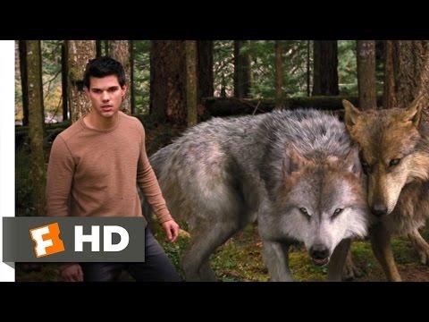 Twilight: Breaking Dawn Part 2 (3/10) Movie CLIP - A Wolf Thing (2012) HD