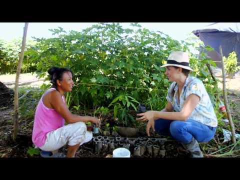En tierra caliente también hay hortalizas. Escuela de campo (Capítulo completo)