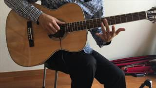 Close To You (They Long To Be) - Sten Le - The Carpenters (fingerstyle guitar cover)