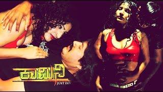2013 Full Kannada Movie: Kamini